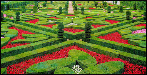 French garden at the Chateau de Villandry, France